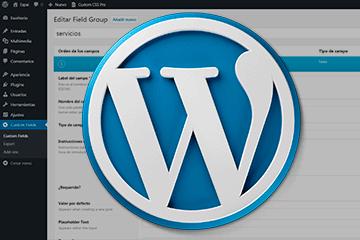 Campos personalizados en WordPress